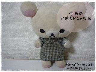 ちこちゃんのアボカド栽培日記R★5★こんなの発見-1