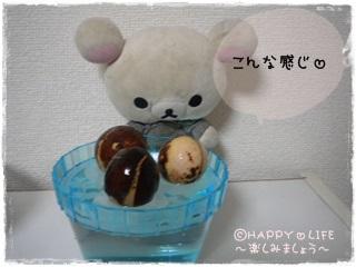 ちこちゃんのアボカド栽培日記R★5★こんなの発見-4
