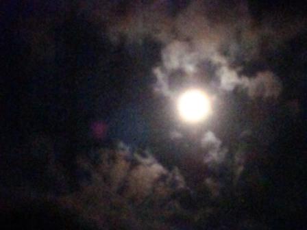 お月見コンサート-07
