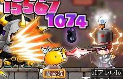 Maple110219_172500.jpg
