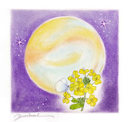 月と菜の花と蝶