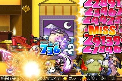 Maple130129_081513.jpg