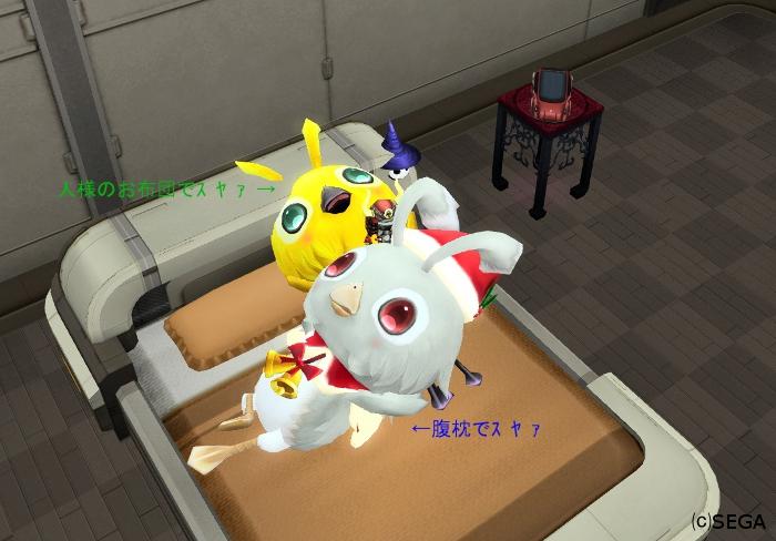 人様のお宅で暖を取ったりお風呂に入ったりするにとどまらずついにお布団で寝ることも覚えました柚子那さんです。