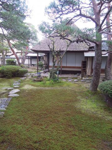 Hanagatami 166 16