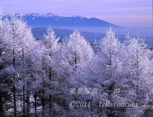 霧氷と八ヶ岳