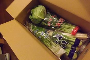 0915野菜