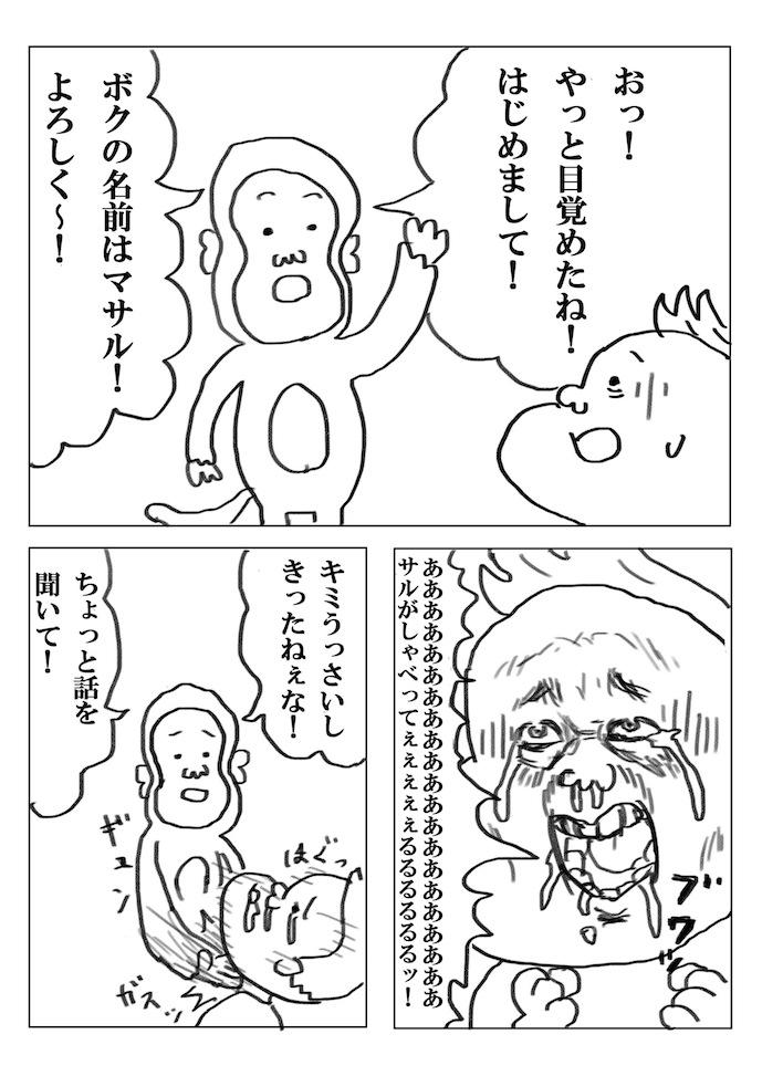 p14.jpg