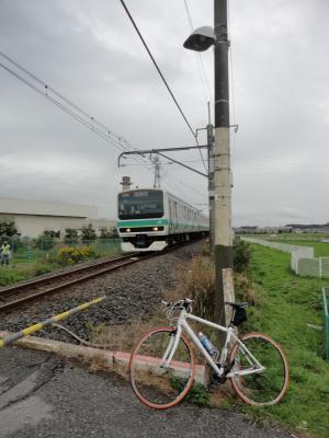 DSC03074.jpg