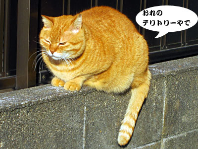 13_02_01_3.jpg