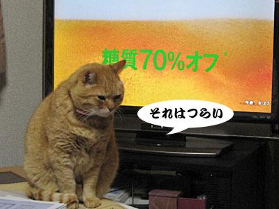 13_02_09_1.jpg