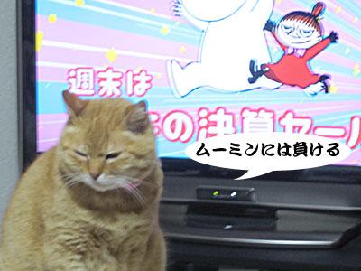 13_02_09_2.jpg