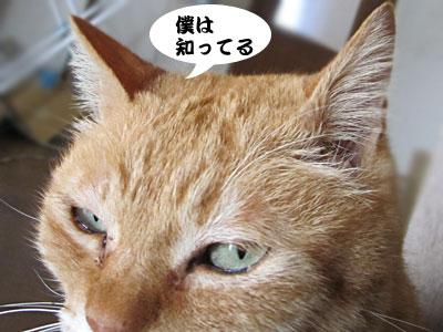 13_02_14_5.jpg