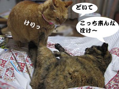 13_02_23_1.jpg