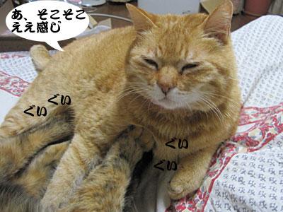 13_02_23_3.jpg