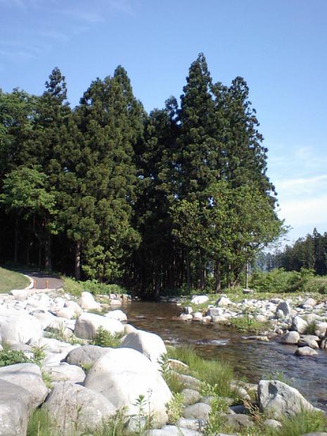 土樽の川沿い