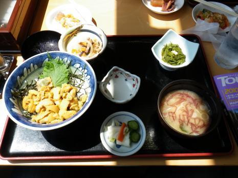 道の駅宮古、生うに丼2100円