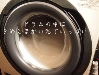 PB201168.jpg