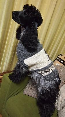 セーター横