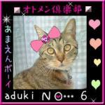 オトメン倶楽部2