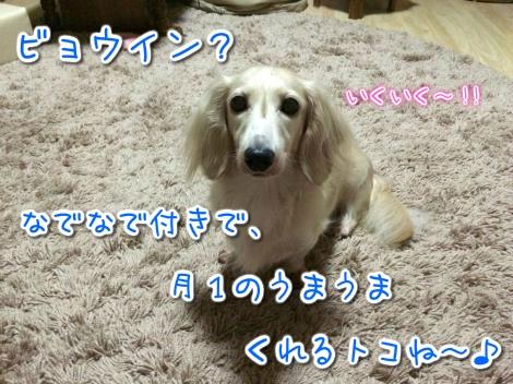 20141014230128.jpg