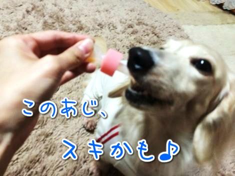 20141019185108.jpg