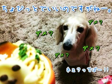 20141019190323.jpg