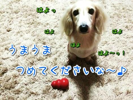 20141019191449.jpg