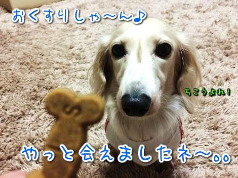 20141019192259.jpg