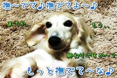 20141022223422.jpg