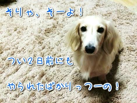 20141101224540.jpg