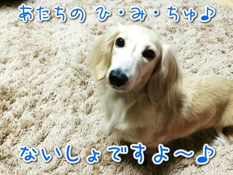 20141101225908.jpg
