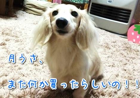 20141105193459.jpg