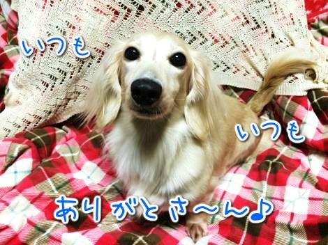 20141107223659.jpg