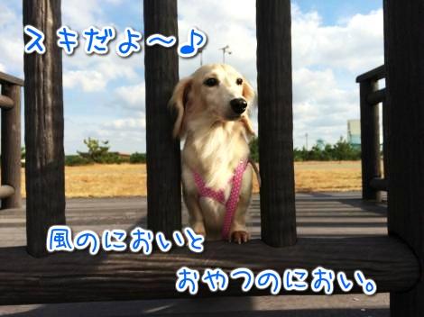 20141114214709.jpg