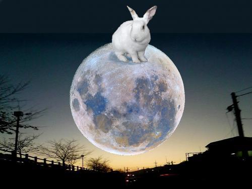 on_the_moon_convert_20130918212225.jpg