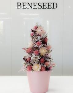 修正_クリスマスツリー_2階
