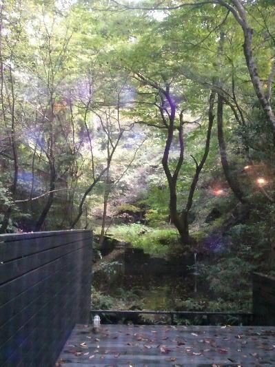 東山ボヌールの店内からの眺め
