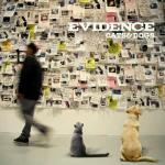 wpid-Evidence.jpeg