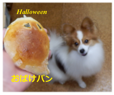 201410313.png