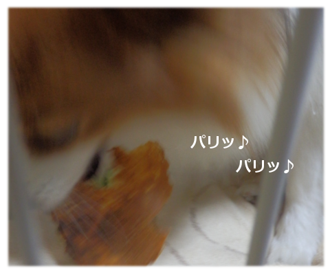 201411203.png