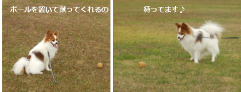 201412026.png
