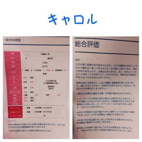 201411171946046d3.jpg