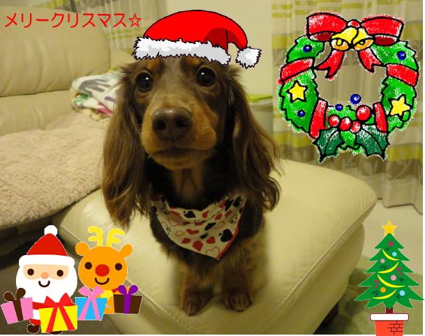 ショコラクリスマス