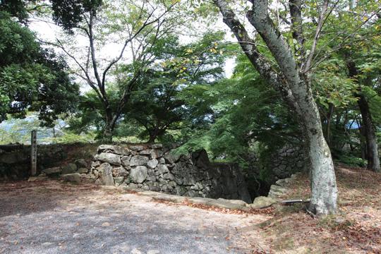 20100811_tsuyama_castle-58.jpg