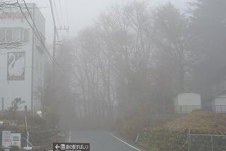 DSC_8418.jpg