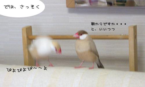休日の朝_5