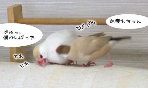 休日の朝_8
