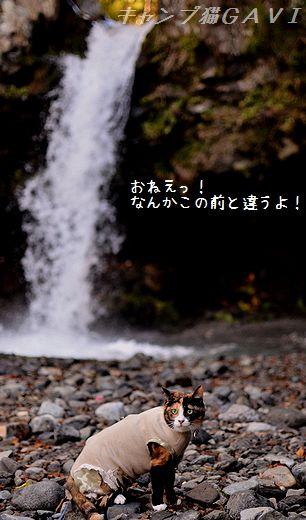 130929_6460.jpg
