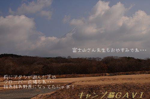 131208_0049.jpg