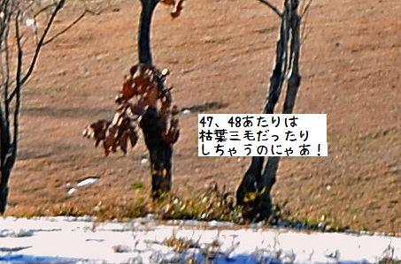 131222_0478A1.jpg